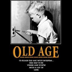 Age is the enemy of the young.