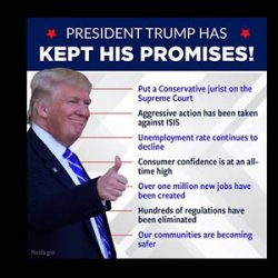 Trump - what has he achieved while in Office?