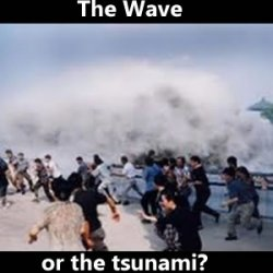 The Will of the People or just some of the People? The Wave is coming....or is it a tsunami?