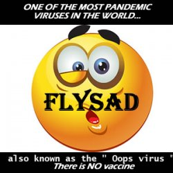 I remember when..... I got Flysad also known as the oops virus