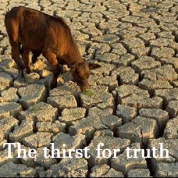 The Drought of Patriotism, Commonsense and Critical Thinking