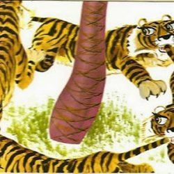 Tiger balm or tiger by the tail?